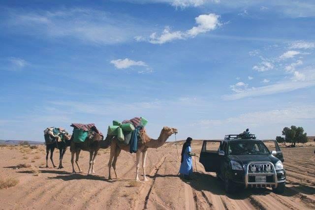 cameltrekkinginmerzouga.jpg