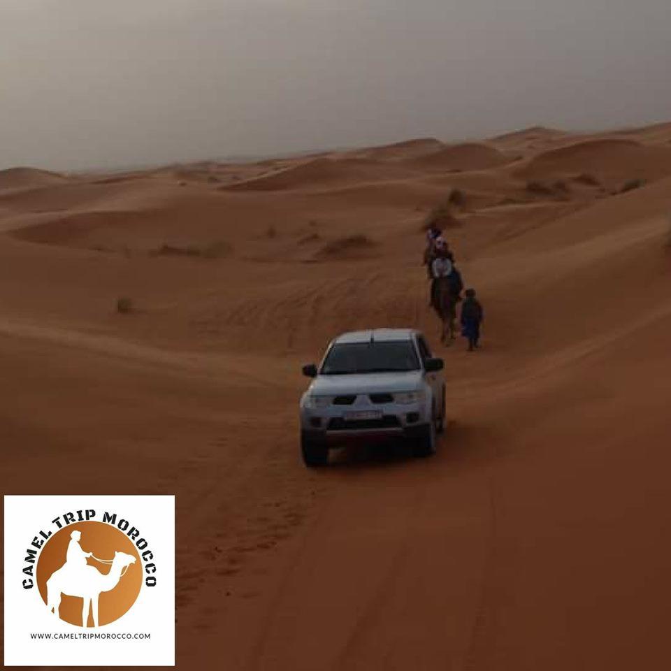 desertcameltours.jpg